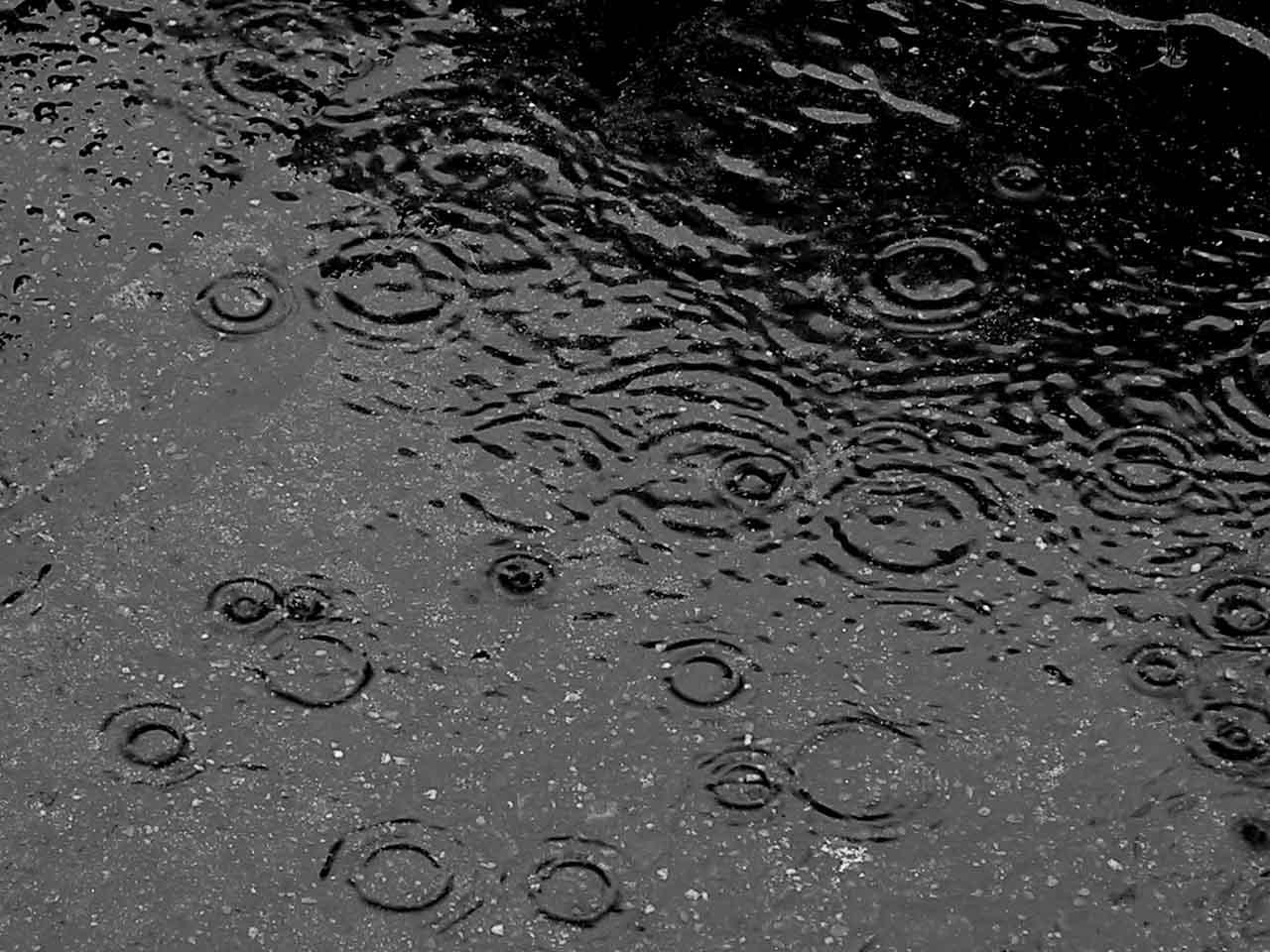 Gargano: allerta meteo per le prossime ore